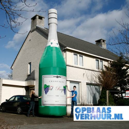 Champagnefles 7.0m afbeelding 1